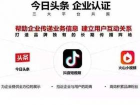 抖音企业蓝V认证申请流程详解!